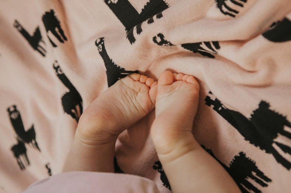 Babydecke_mit_Alpakas_Biobaumwolle